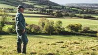 Farmers are in need of Brexit bailout