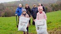 Carbery Group to give Cork farmers 12,000 trees