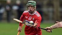 WIT back in Fitzgibbon quarter-finals