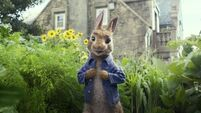 Domhnall Glesson hopped at the chance to play the new Peter Rabbit film