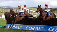 Willie Mullins to consider French test for Djakadam