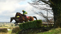 Punchestown tips: Auvergnat can defy top weight in La Touche Cup