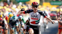 Ireland's Dan Martin wins Tour de France stage with perfectly-timed attack
