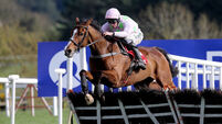 Fantastic Faugheen back to his best in all-the-way Stayers Hurdle triumph
