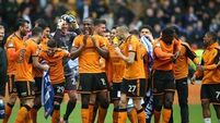 Wolves celebrate promotion with victory over Birmingham
