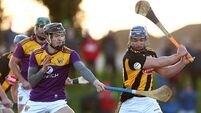 'Hurling in July' is Davy's target after Wexford beat Kilkenny by double scores