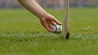 Maynooth survive late Trinity rally in Fitzgibbon opener