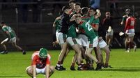 Cork Premier IHC: Majestic Fr O'Neill's deliver knockout blows