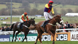 Richard Johnson banned for excessive whipping in Gold Cup win