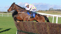 Douvan and Faugheen in 'great form' as Cheltenham approaches