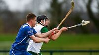 19 counties represented in Ireland squads for Hurling-Shinty Internationals