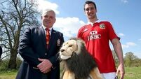'The missing piece of the jigsaw': Lions to award players with ceremonial caps