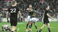 Rassie Erasmus: South Africa back on track after shocking All Blacks
