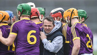 Confirmed: Davy Fitzgerald to continue as Wexford manager