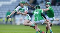 Shefflin: 'We could have been in relegation... Here we are now, Leinster champions again'