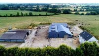 175 arable acres for sale near Mullinahone in Co Tipperary