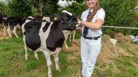 Dairy farms must become sought-after places to work