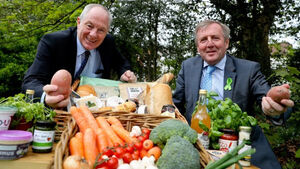 €15m in artisan and small food support grants