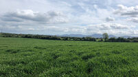 Landmark sale of 91.6 acres for €2m at Cahir