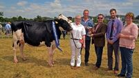 iTunes Top 100 singer a show-stopper at Clonakilty show.