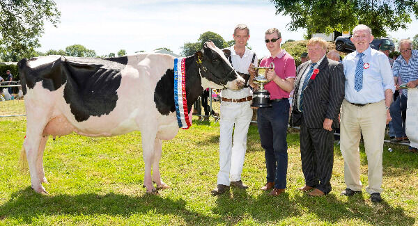 Sean Murphy pictured with his Junior Cow Champion at Charleville Show,also in photo Pat Murphy of Kerry Agri Business sponsor,Michael Gould Judge and Tim Broderick of Charleville Show.