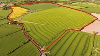 200-acre farm in North Cork could exceed €3,000,000