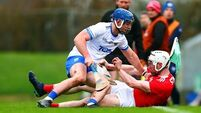 Super-sub O'Connell sees Cork to victory over Waterford