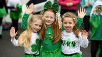 Greatest of shows planned for St Patrick's Day in Kerry
