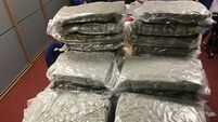 Woman, 30s, arrested after cannabis herb worth almost €1m seized in Louth