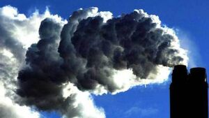 €2.3bn coal importer rejects abuse claim