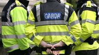 Gardaí  appeal for witnesses of Co Louth armed robbery