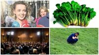 BULLETIN: Rebecca Carter's marks upgraded; Bags of spinach recalled from supermarkets