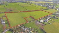 €16,000 per acre guide price at Patrickswell