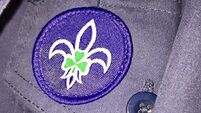 'Fundamental deficits' in how Scouting Ireland protects children