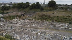 Clean up of Ellis's Yard in Ballyvolane will cost at least €53,000
