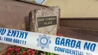 Gardaí continue to quiz woman over fatal stabbing