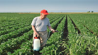 Herbicide usage reduced 95% in trials of Asterix