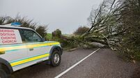1,500 homes, farms and businesses left without power after Storm Diana