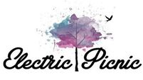 Going, going, gone - Electric Picnic is already sold out