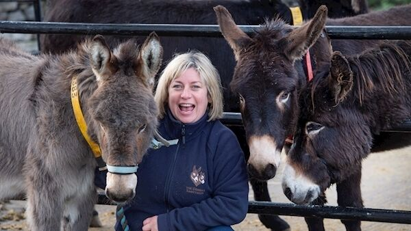 Groom Mandy Szwarc looking after Mary at the Donkey Sanctuary, Knockardbane, Liscarroll, Co Cork. Picture: Dan Linehan