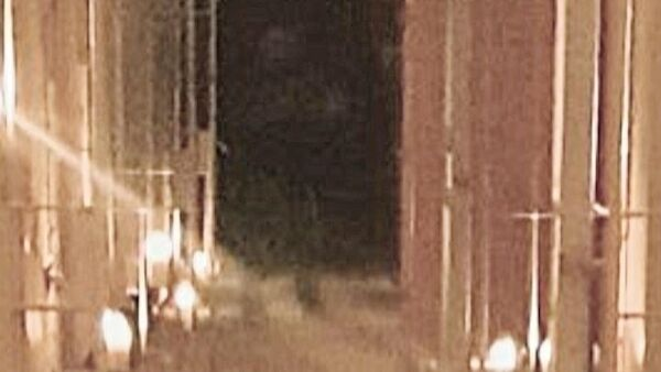 A zoomed in version of the mysterious figure. Credit Louise Buynan.