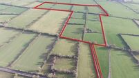 €500,000 expected for 42 acres in South Tipperary