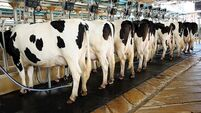 Milk collection from farms continuing as normal with strict protocols in place