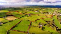 €1m sought for high-quality residential Golden Vale farm