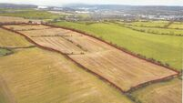 Residential development potential boosts asking price for Co Cork farm