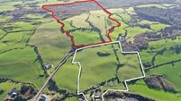 84-acre West Cork farm of mixed quality for sale