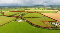 Residential Adare farm sells for €530,000