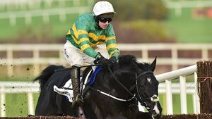 Le Richebourg in the Arkle picture after Leopardstown triumph