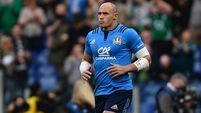 Sergio Parisse ruled out of Italy's Six Nations clash with Ireland