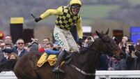 First Gold Cup for Willie Mullins as Al Boum Photo storms home